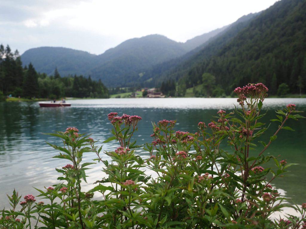 Het bergmeer Pillersee ligt tussen de bergen