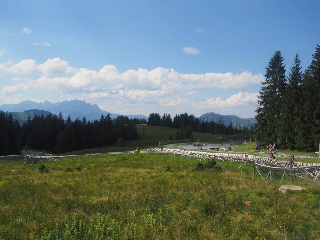 De rodelbaan Timoks Coaster in de speeltuin Timoks Wilde Welt midden in de bergen