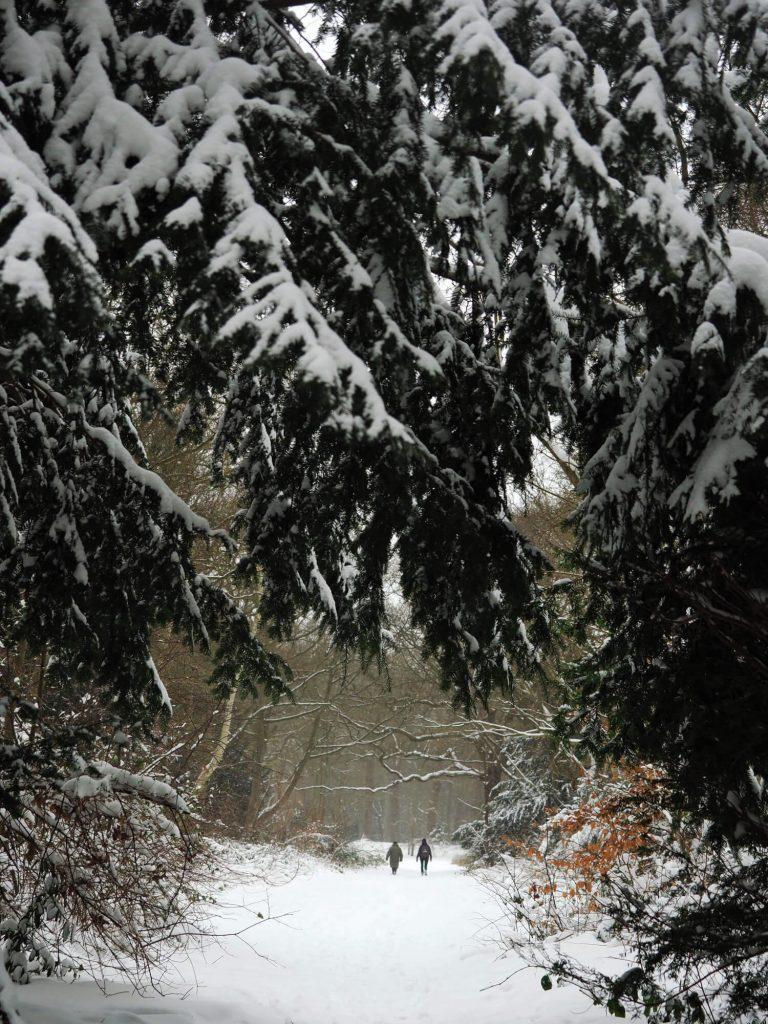 Wandelen in de sneeuw regenjas